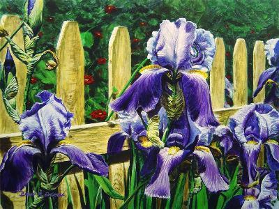 Iris' by the Fence-Bruce Dumas-Giclee Print