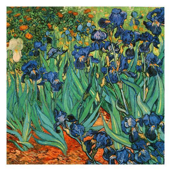 Iris (Détail)-Vincent van Gogh-Art Print