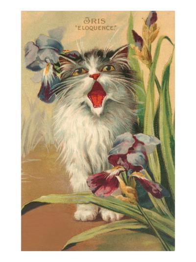 Iris Eloquence with Kitten--Art Print