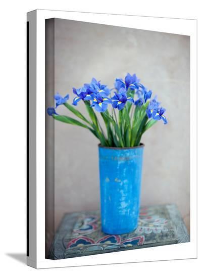 Iris Flowers Gallery-Wrapped Canvas-Elena Ray-Gallery Wrapped Canvas