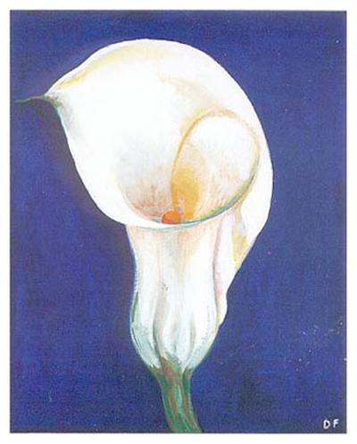 Iris I-D^ Ferrer-Art Print
