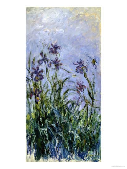 Iris Mauves, 1914-1917-Claude Monet-Premium Giclee Print