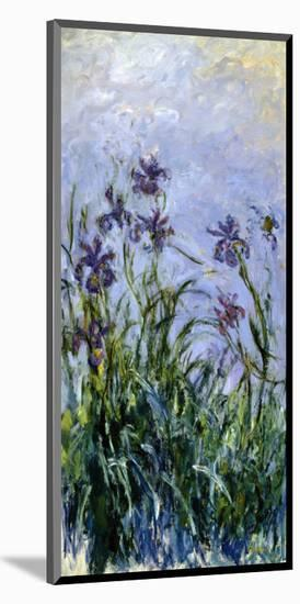 Iris Mauves, 1914-1917-Claude Monet-Mounted Giclee Print