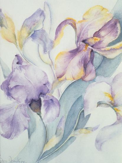 Iris Mixed, Ola Kale and Mary Todd-Karen Armitage-Giclee Print
