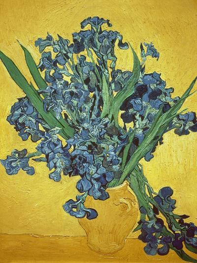 Iris-Vincent van Gogh-Giclee Print