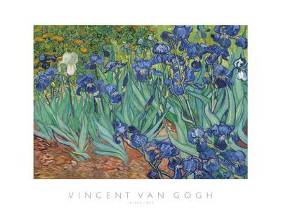 https://imgc.artprintimages.com/img/print/irises-1889_u-l-f9alna0.jpg?p=0