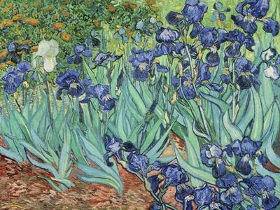 https://imgc.artprintimages.com/img/print/irises-1889_u-l-pgvir60.jpg?p=0
