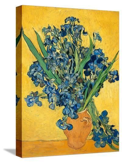 Irises, 1890-Vincent van Gogh-Stretched Canvas Print