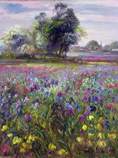 Irises and Distant May Tree, 1993-Timothy Easton-Giclee Print
