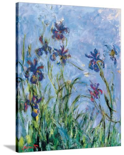 Irises (detail)-Claude Monet-Stretched Canvas Print