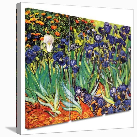 Irises in the Garden 3 piece gallery-wrapped canvas-Vincent van Gogh-Gallery Wrapped Canvas Set