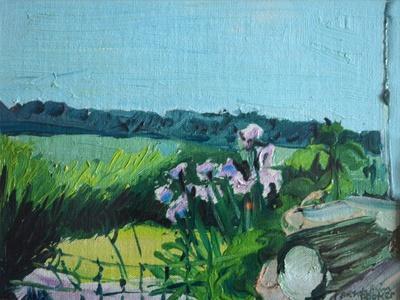 https://imgc.artprintimages.com/img/print/irises-in-the-garden_u-l-q1dyksq0.jpg?p=0