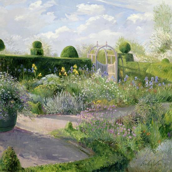 Irises in the Herb Garden, 1995-Timothy Easton-Giclee Print