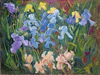https://imgc.artprintimages.com/img/print/irises-pink-blue-and-gold-1993_u-l-pjc3br0.jpg?p=0