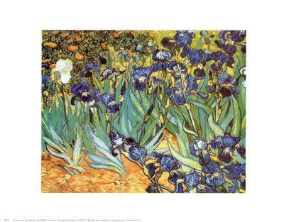 https://imgc.artprintimages.com/img/print/irises-saint-remy-c-1889_u-l-e6mez0.jpg?p=0