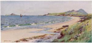 Irish Coastline Scene