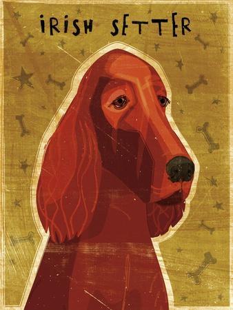 https://imgc.artprintimages.com/img/print/irish-setter_u-l-q1afj4f0.jpg?p=0