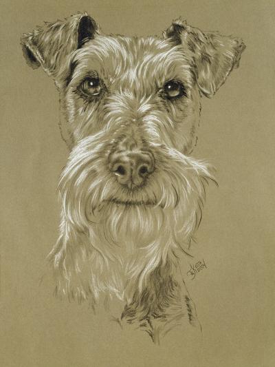 Irish Terrier-Barbara Keith-Giclee Print