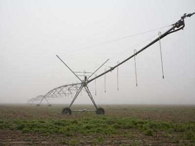 Irrigation Machine Stretches into the Eastern Shore Fog-Stephen St^ John-Photographic Print