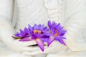 Fresh Flue Star Water Lily or Star Lotus Flowers in Buddha Image Hands by Iryna Rasko