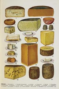 Cheese by Isabella Beeton