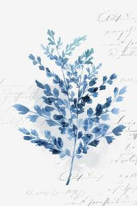 Botanical Blue III by Isabelle Z