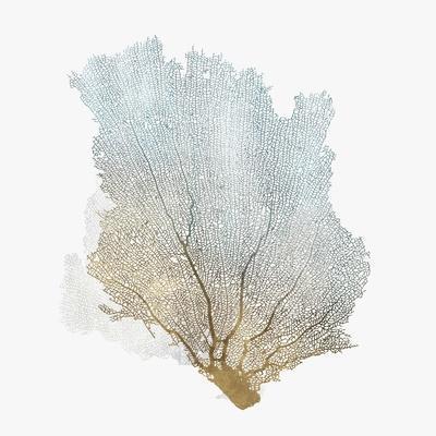 Delicate Coral I