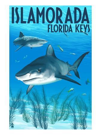 Islamorada, Florida Keys - Tiger Shark-Lantern Press-Art Print