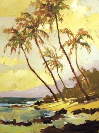 https://imgc.artprintimages.com/img/print/island-dream_u-l-pifnv30.jpg?p=0