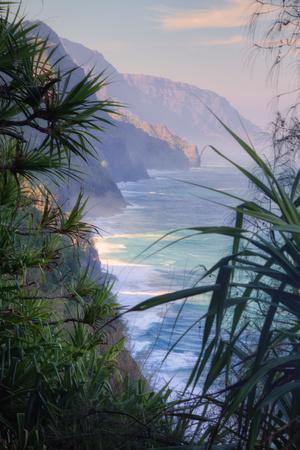 https://imgc.artprintimages.com/img/print/island-experience-kauai_u-l-q1geb9v0.jpg?p=0