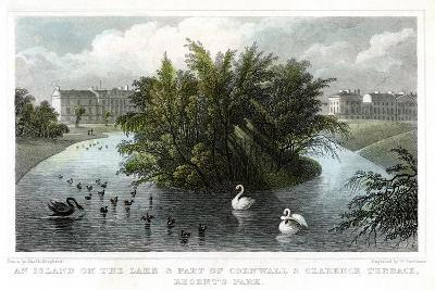 Island on the Lake and Part of Cornwall and Clarence Terraces, Regent's Park, London, 1828-William Tombleson-Giclee Print