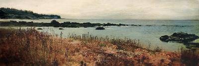 Island Shores I-Amy Melious-Premium Giclee Print