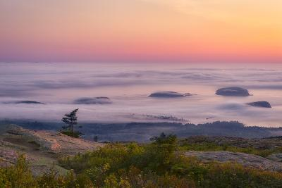 Islands in the Fog-Michael Blanchette-Photographic Print