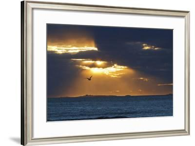 Isles of Shoals as Seen from Rye Harbor SP in Rye, New Hampshire-Jerry & Marcy Monkman-Framed Photographic Print
