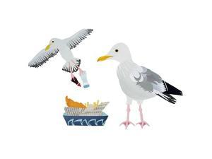 Seagulls, 2014 by Isobel Barber