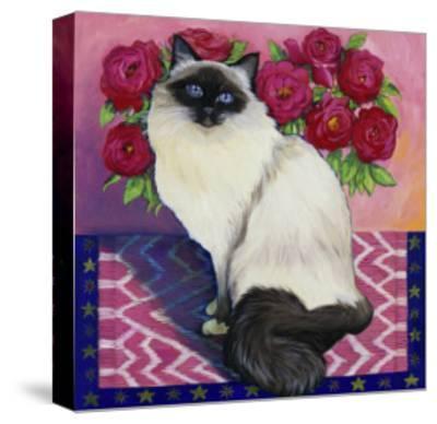 Burmese Cat, Series II
