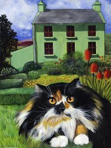 Persian Cat in Ireland (Chat Persan En Irland) by Isy Ochoa