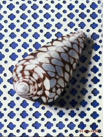 Shell (Coquillage)