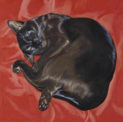 Velvet Cat I (Chat Velours I)