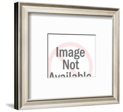 """""""It's just the architect's model, but I'm very excited."""" - New Yorker Cartoon-Leo Cullum-Framed Premium Giclee Print"""