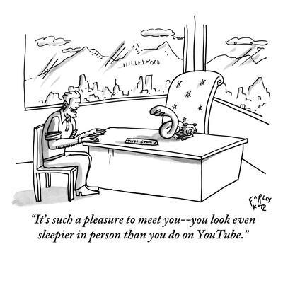 https://imgc.artprintimages.com/img/print/it-s-such-a-pleasure-to-meet-you-you-look-even-sleepier-in-person-than-y-new-yorker-cartoon_u-l-pgs7up0.jpg?p=0