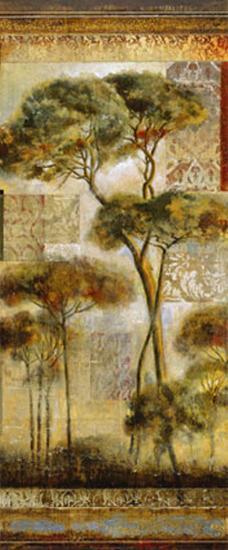 Italian Arbor I-John Douglas-Art Print