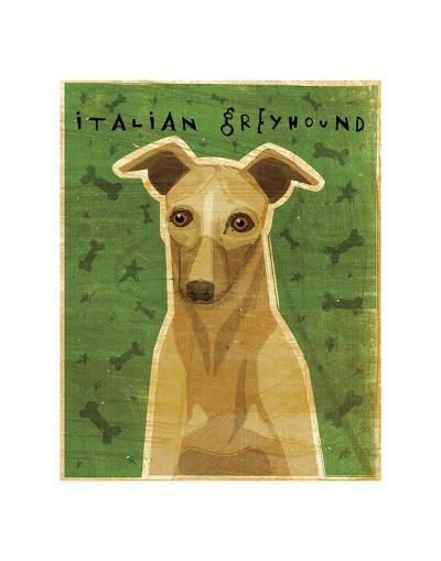 Italian Greyhound (Fawn)-John W^ Golden-Art Print
