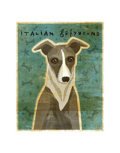 Italian Greyhound (White & Grey)-John W^ Golden-Art Print