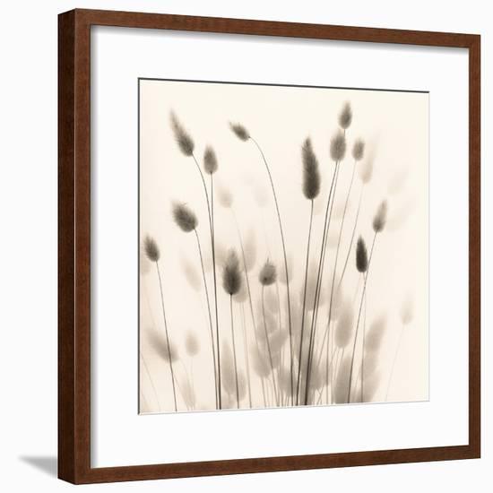 Italian Tall Grass No. 1-Alan Blaustein-Framed Photographic Print