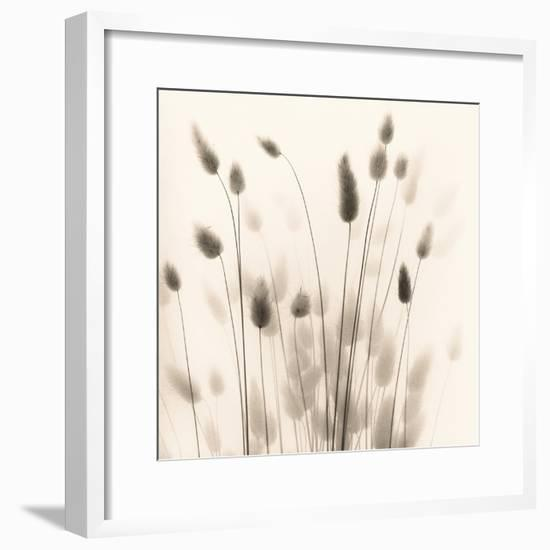 Italian Tall Grass No. 1-Alan Blaustein-Framed Photographic Print