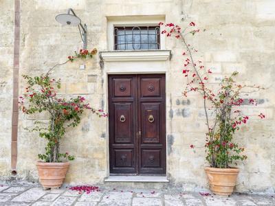 https://imgc.artprintimages.com/img/print/italy-basilicata-matera-flowers-adorning-the-entrance-of-a-sassi-house_u-l-q1gsine0.jpg?p=0