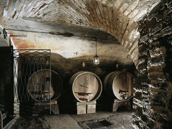 Italy, Brescia, Castle of Bornato, Wine Cellar--Giclee Print
