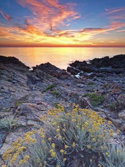 Italy, Sardinia, Olbia-Tempio District, Budoni, Coastline-Francesco Iacobelli-Photographic Print