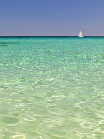 Italy, Sardinia, Olbia-Tempo, Berchidda, a Sailing Boat Out at Sea-Nick Ledger-Photographic Print